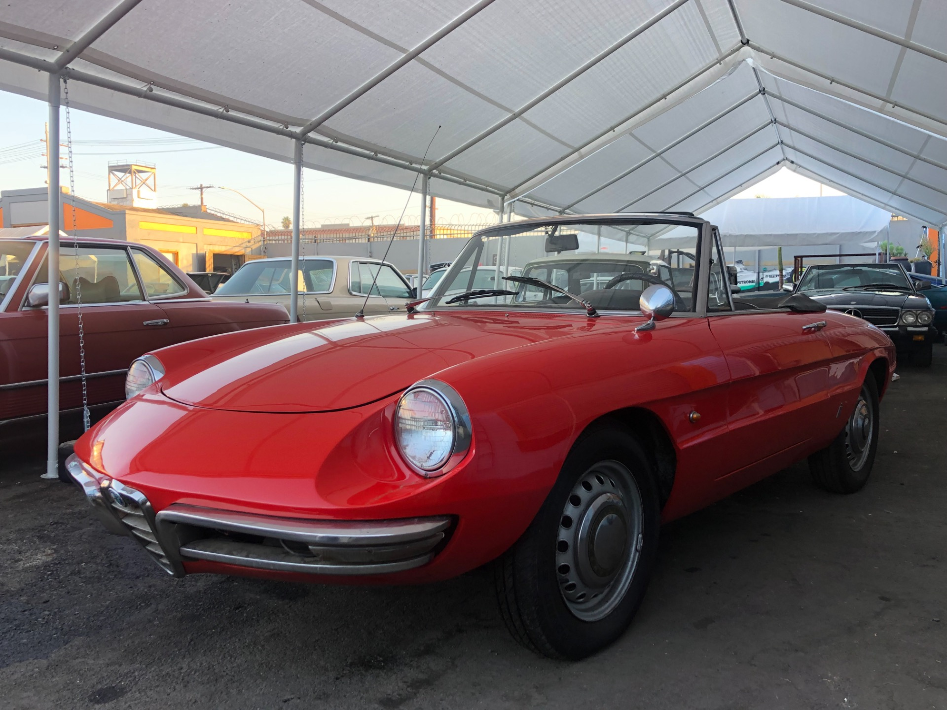 Used 1967 ALFA ROMEO Spider Duetto